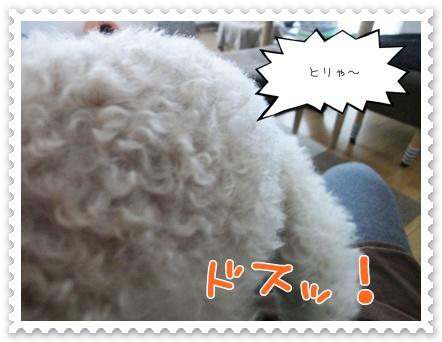 b13_20120103230207.jpg