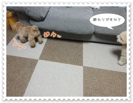 b13_20120129165031.jpg