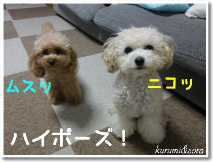 b14_20101127153147.jpg