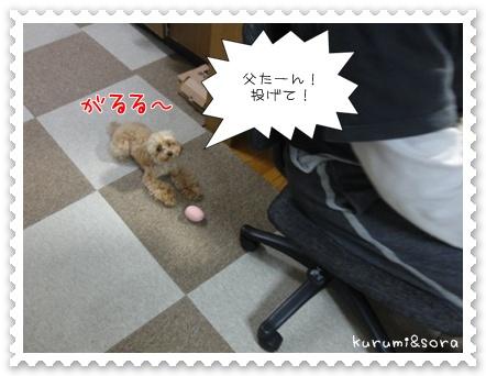 b14_20110517183925.jpg