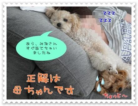 b14_20110927193844.jpg