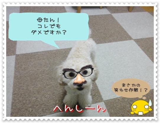 b15_20110110015156.jpg