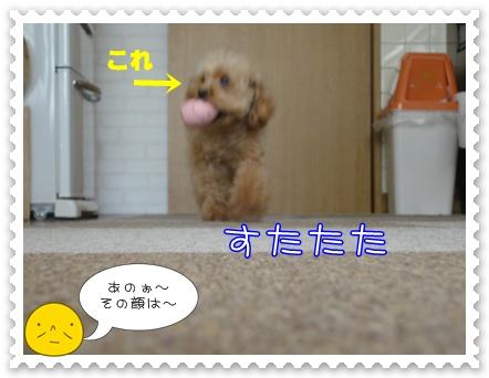 b15_20110207213417.jpg