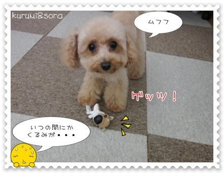 b15_20110409120851.jpg