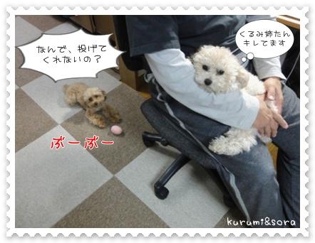 b15_20110517183923.jpg