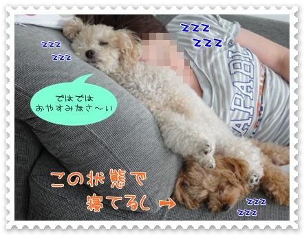 b15_20110927193844.jpg