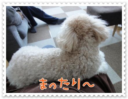 b15_20120103230203.jpg