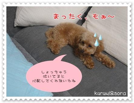 b16_20110219215041.jpg