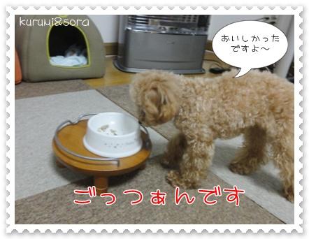 b16_20110303201926.jpg