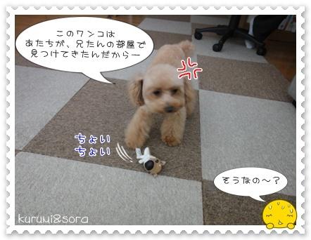 b16_20110409120849.jpg