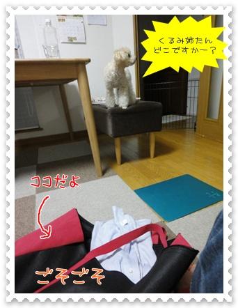 b16_20110806191154.jpg
