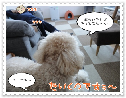 b16_20120103230203.jpg