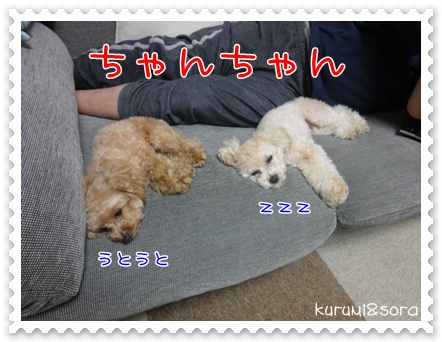 b17_20110219215041.jpg