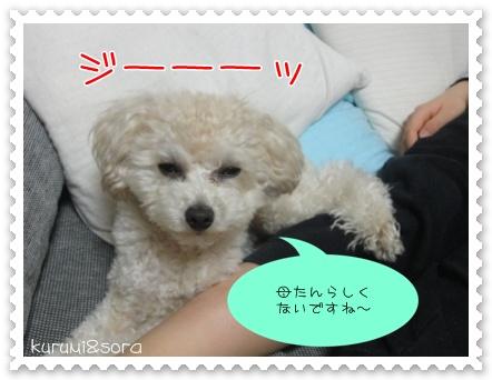 b18_20110303201925.jpg