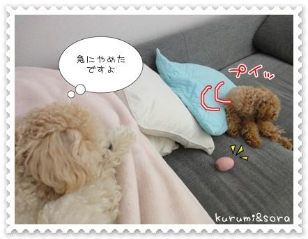 b19_20110511164328.jpg
