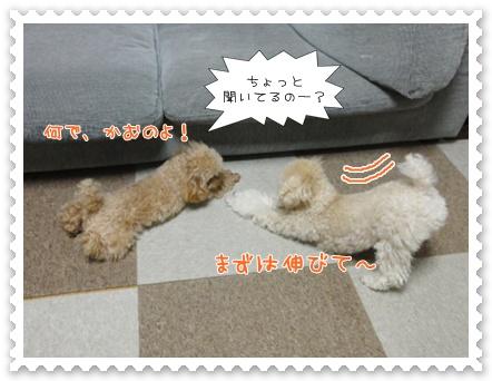 b19_20120129165059.jpg