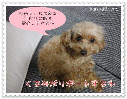 b1_20110303201753.jpg
