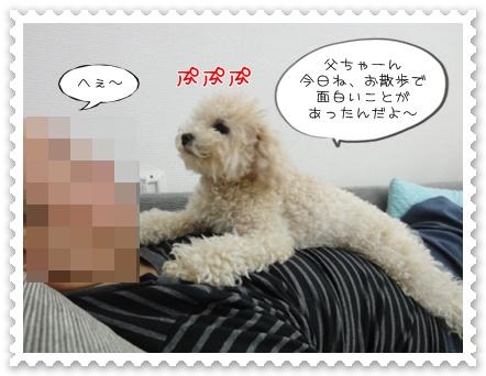 b1_20110531162943.jpg