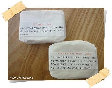 b1_20110615181517.jpg