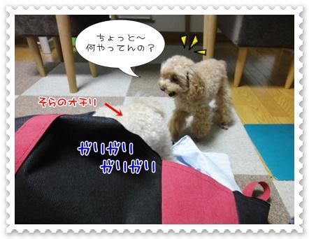 b1_20110806190948.jpg
