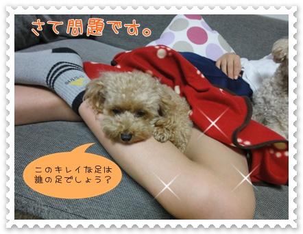 b1_20110927193435.jpg