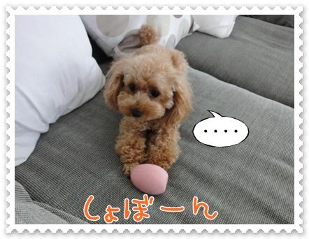 b20_20110919094829.jpg
