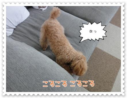 b21_20110919094829.jpg