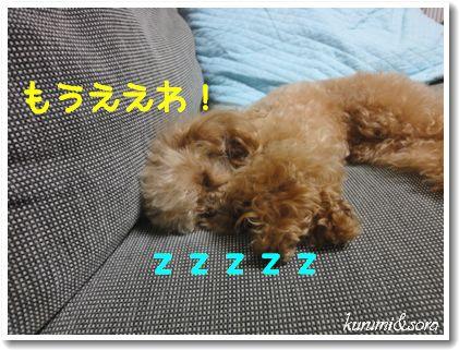 b22_20101127153211.jpg