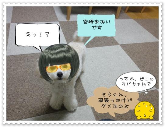 b23_20110110101301.jpg