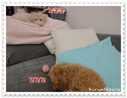 b23_20110511164319.jpg