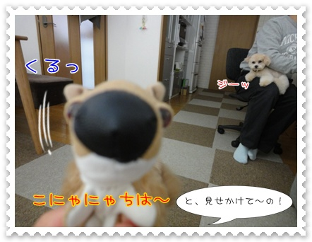 b24_20110412145729.jpg
