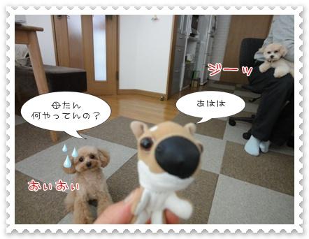 b25_20110412145727.jpg