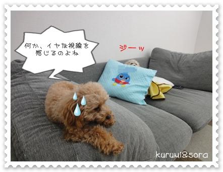 b2_20110121233509.jpg