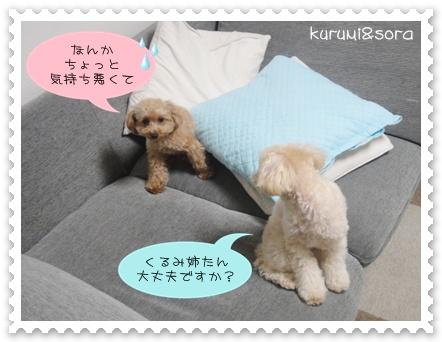 b2_20110219214927.jpg