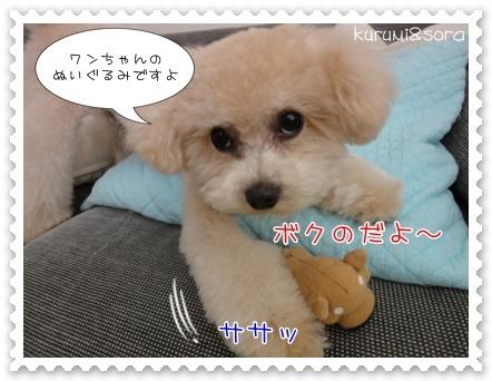 b2_20110409120703.jpg