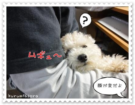 b2_20110517183640.jpg