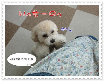 b2_20110723162946.jpg