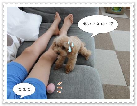 b2_20110919094447.jpg
