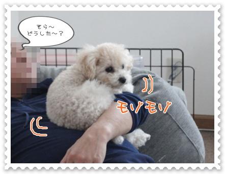 b2_20120103225855.jpg