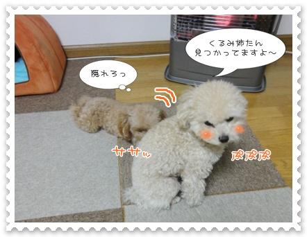 b2_20120129164625.jpg