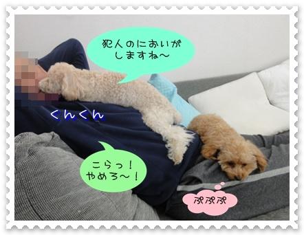 b3_20110105165621.jpg