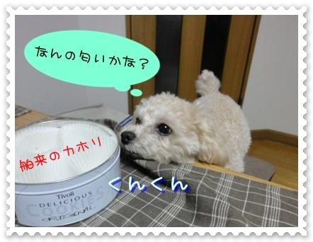 b3_20110110014944.jpg