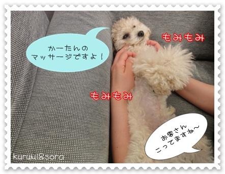 b3_20110207213258.jpg