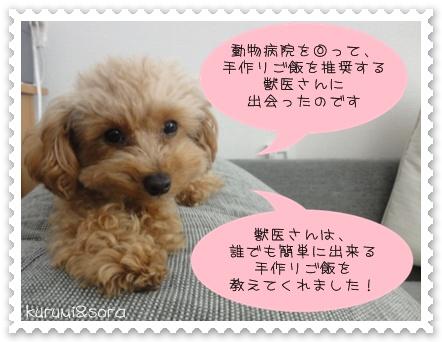 b3_20110303201752.jpg