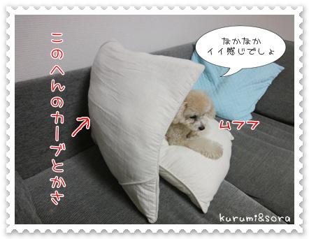b3_20110505144704.jpg
