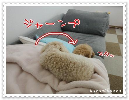 b3_20110511163914.jpg