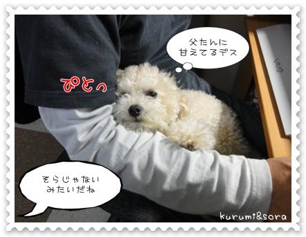 b3_20110517183639.jpg