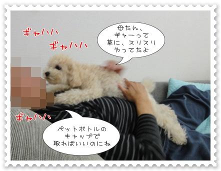 b3_20110531162941.jpg