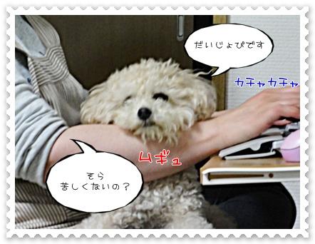 b3_20110702204433.jpg