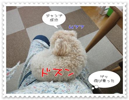 b3_20110723162946.jpg
